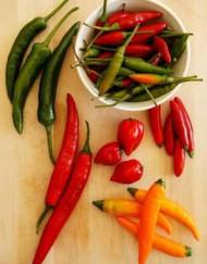 Chili frø